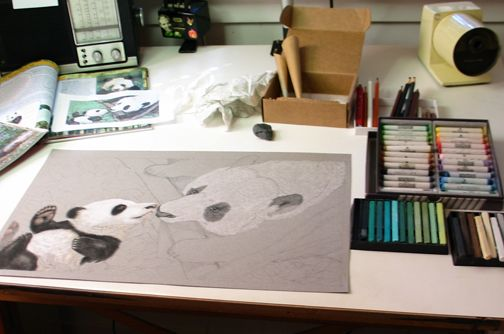 Teaser Image: Pandas' Earthquake Escape, illustrated by Susan Detwiler.