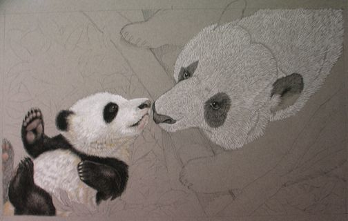 Close up: Pandas' Earthquake Escape, illustrated by Susan Detwiler.