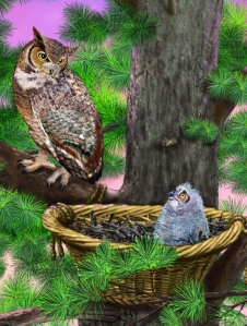 Baby Owl's Rescue. Illustration by Laura Jacques.