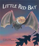 LittleBat_cover