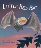 LittleBat_cover