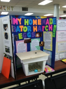 Will My Homemade Incubator Hatch Eggs