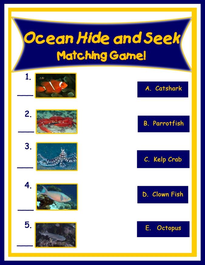 Ocean HideSeek Matching copy