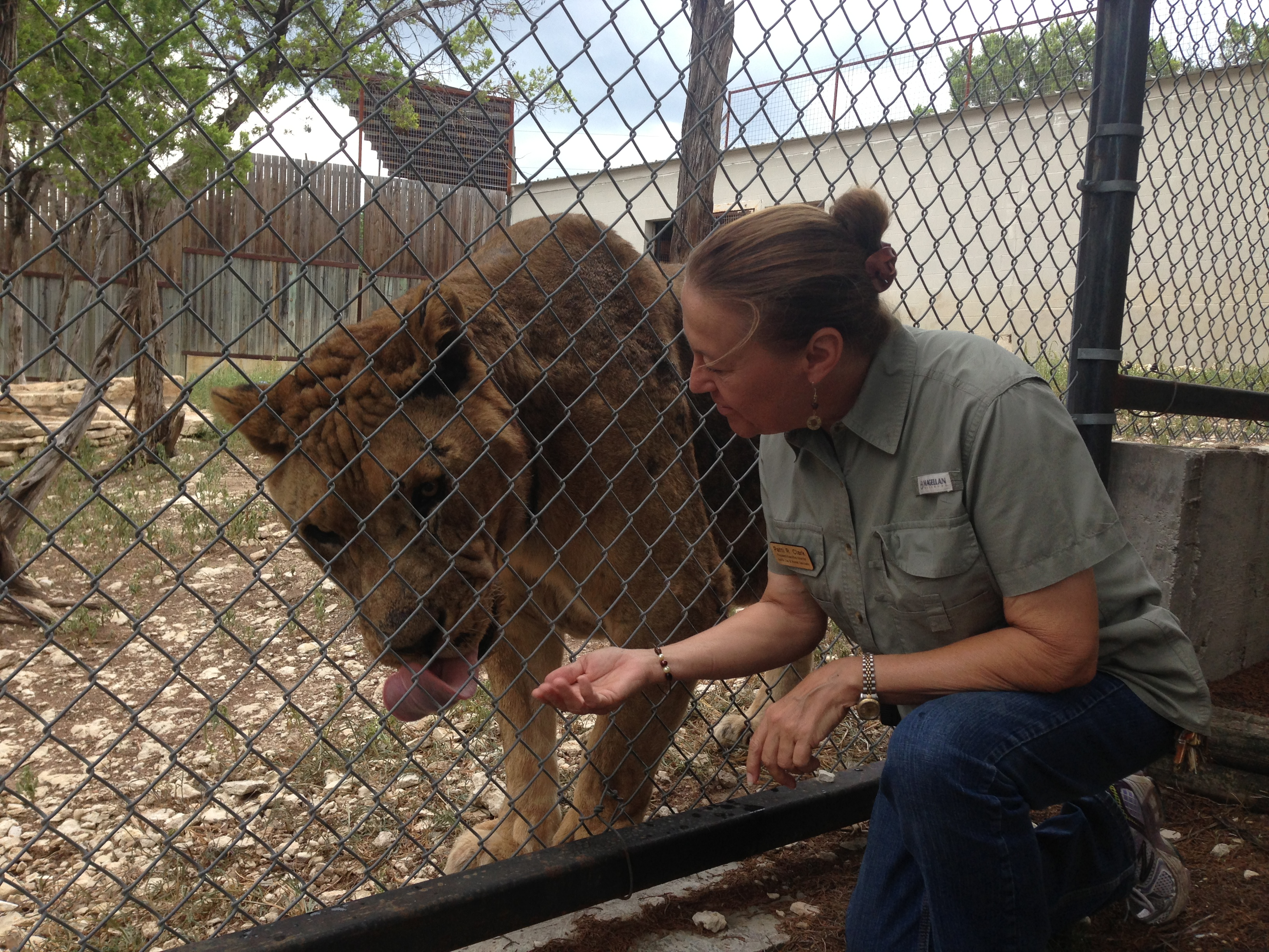 A Trip to the Zoo with Animal Helpers: Meet Austin Zoo