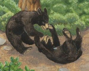 4-5_bears