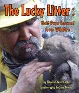 LuckyLitter_187