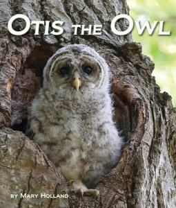 OtisOwl