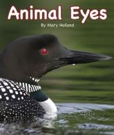 AnimalEyes