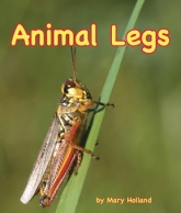 AnimalLegs