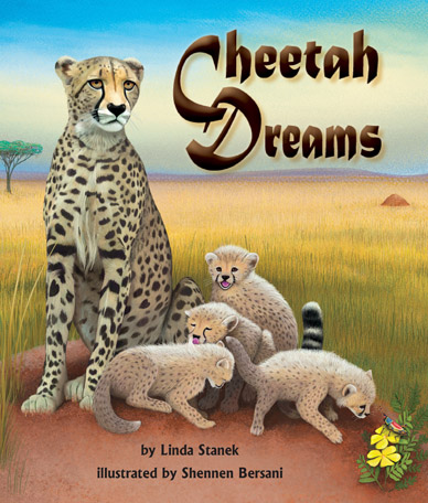 CheetahDreams