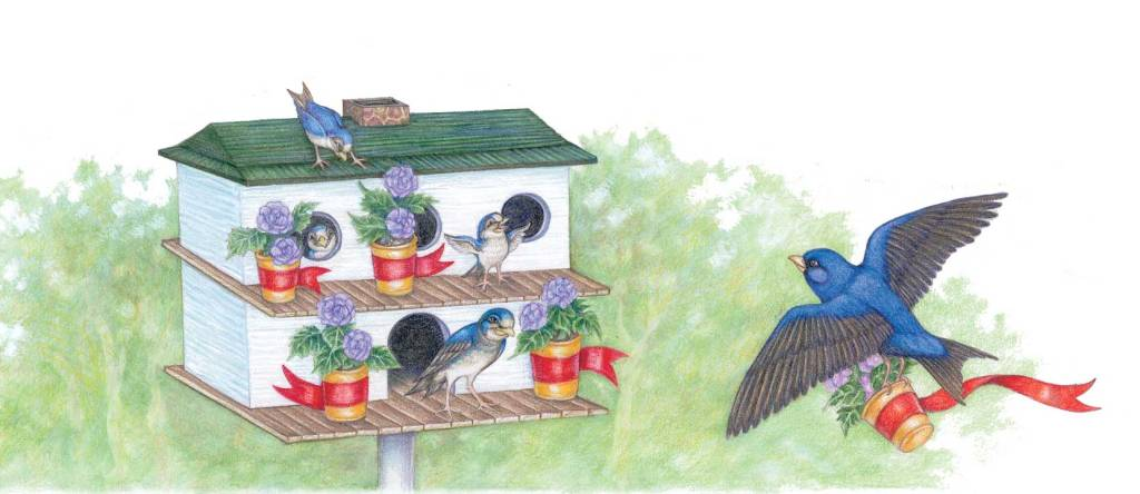 Artwork from Saving Kate's Flowers, illustrated by Laurie Allen Klein