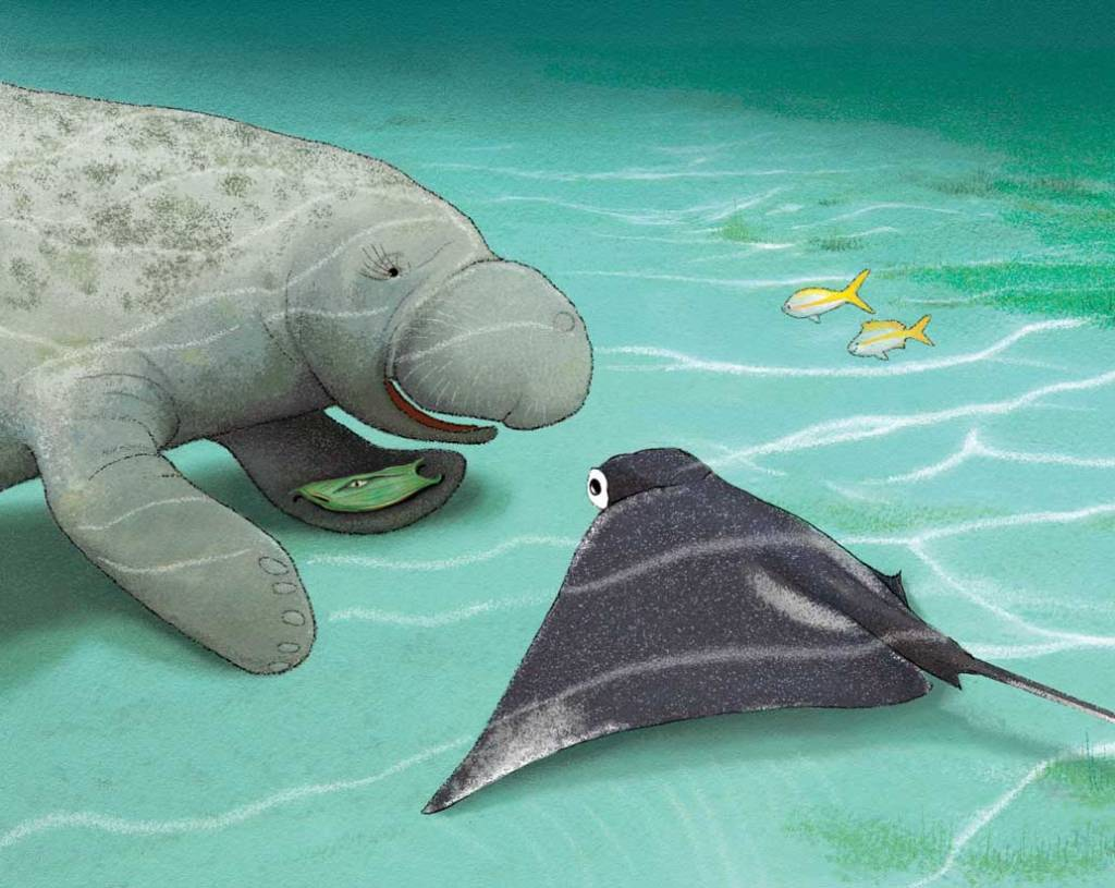 Shark Baby by Ann Downer, illustrated by Shennen Bersani