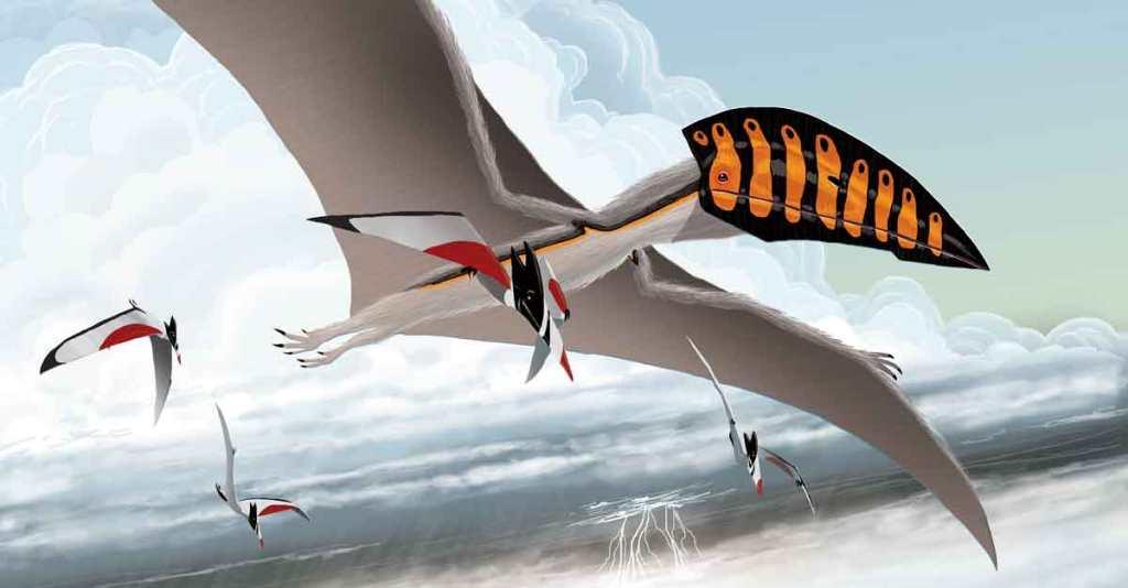 I Am Hatzegopteryx